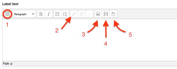 text editor box